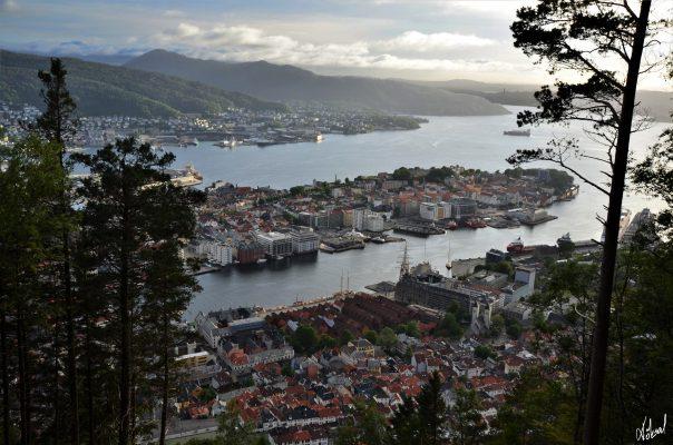 köksal şahin,köksal,şahin,koksal,koksal sahin,fotoğraf,fotoğrafçı,fotoğraf sanatçısı,sanat fotoğrafı,şehir,yaşam,sokak,sokak fotoğrafı,Norveç,Avrupa,bergen,oslo,fiyord