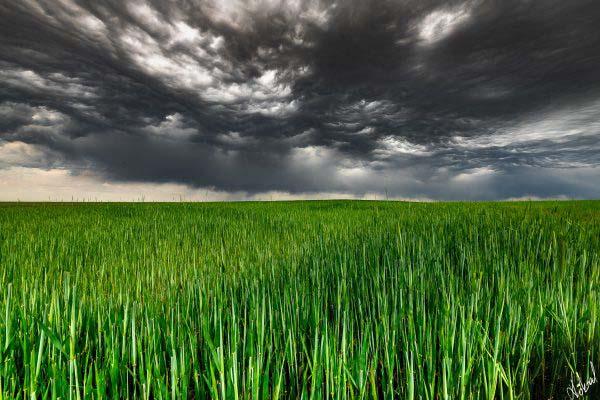 köksal şahin,köksal,şahin,koksal,koksal sahin,doğa,doga,dağ,ırmak,fotoğraf,fotoğrafçı,fotoğraf sanatçısı,